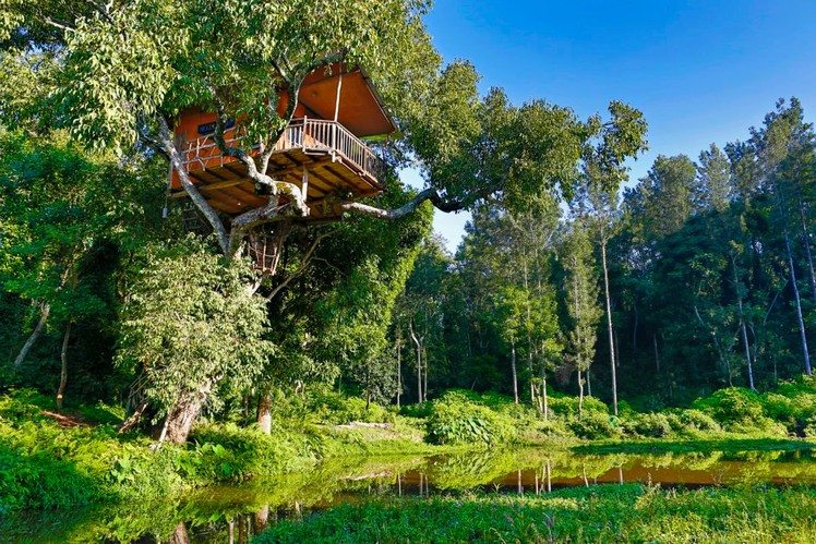 tree house resorts in India