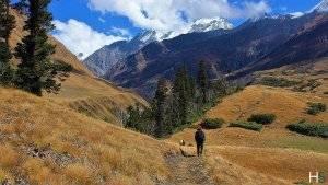 The Trekking Trail