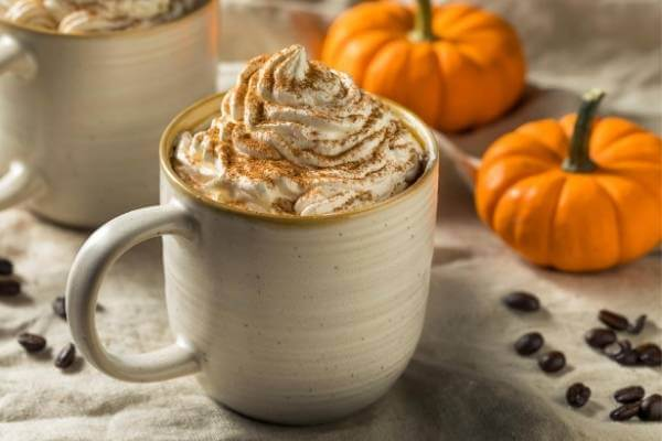 PSL Coffee with Cinnamon and Whipped Cream- Coffee Flavours