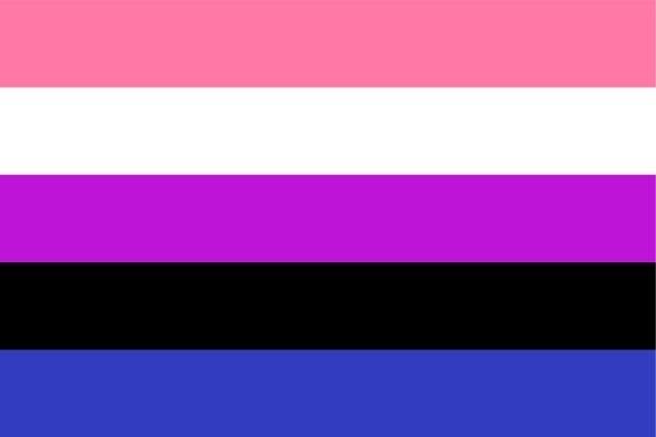 The genderfluid flag