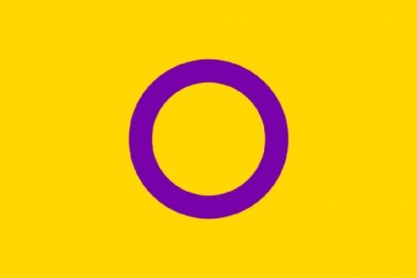 The intersex pride flag
