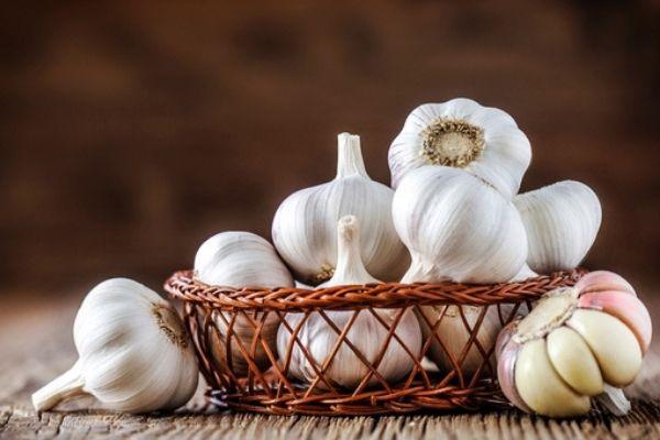 Garlic cloves kept in a basket. Garlic helps get rid of mosquitoes.